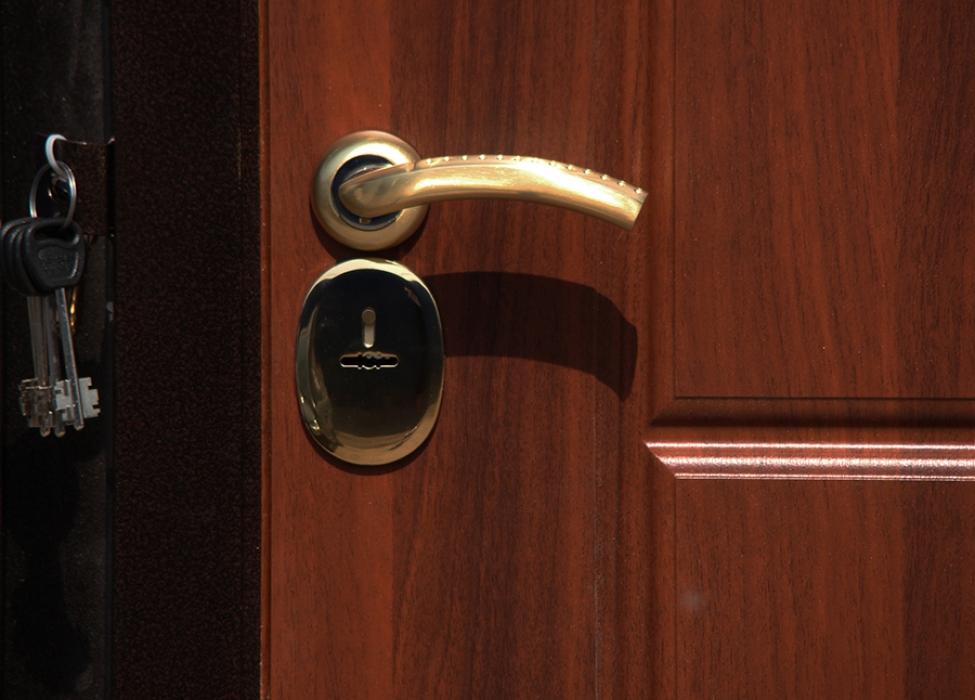 посоветуйте замки для входной двери ношу